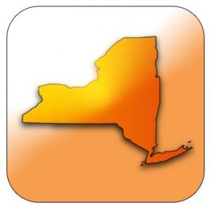 Saltwater Nation: New York