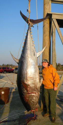 Finally tuna for Oregon tuna fishing report