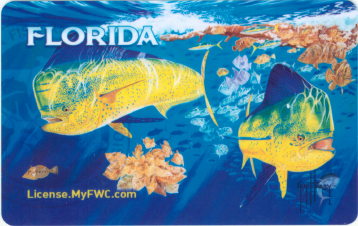 Fwc offers new guy harvey hard card license for Non resident florida fishing license